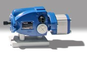 Piston-Gear Pump Assembly with Common Suction Port